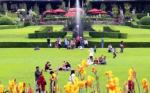 Wisata Bogor yang bagus